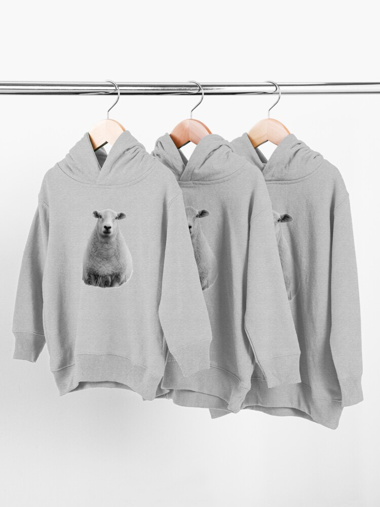 Alternate view of Black and White Sheep in Field Toddler Pullover Hoodie