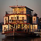 Golden Morning -Ps Marion  by Dave  Hartley