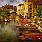 Punting on the Cam by Peter Hammer