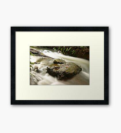 On the rocks... Framed Print
