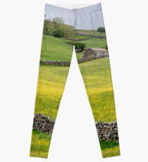 Yorkshire Dales in Summer Leggings
