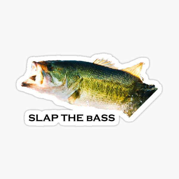 Slap the bass Sticker