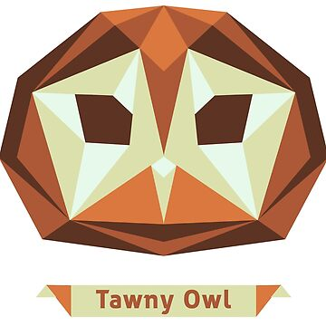 Tawny Owl by annlytical