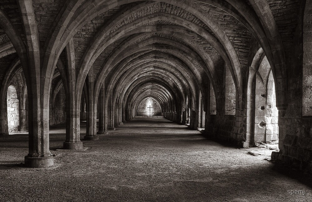 Cellarium Fountains Abbey by spemj