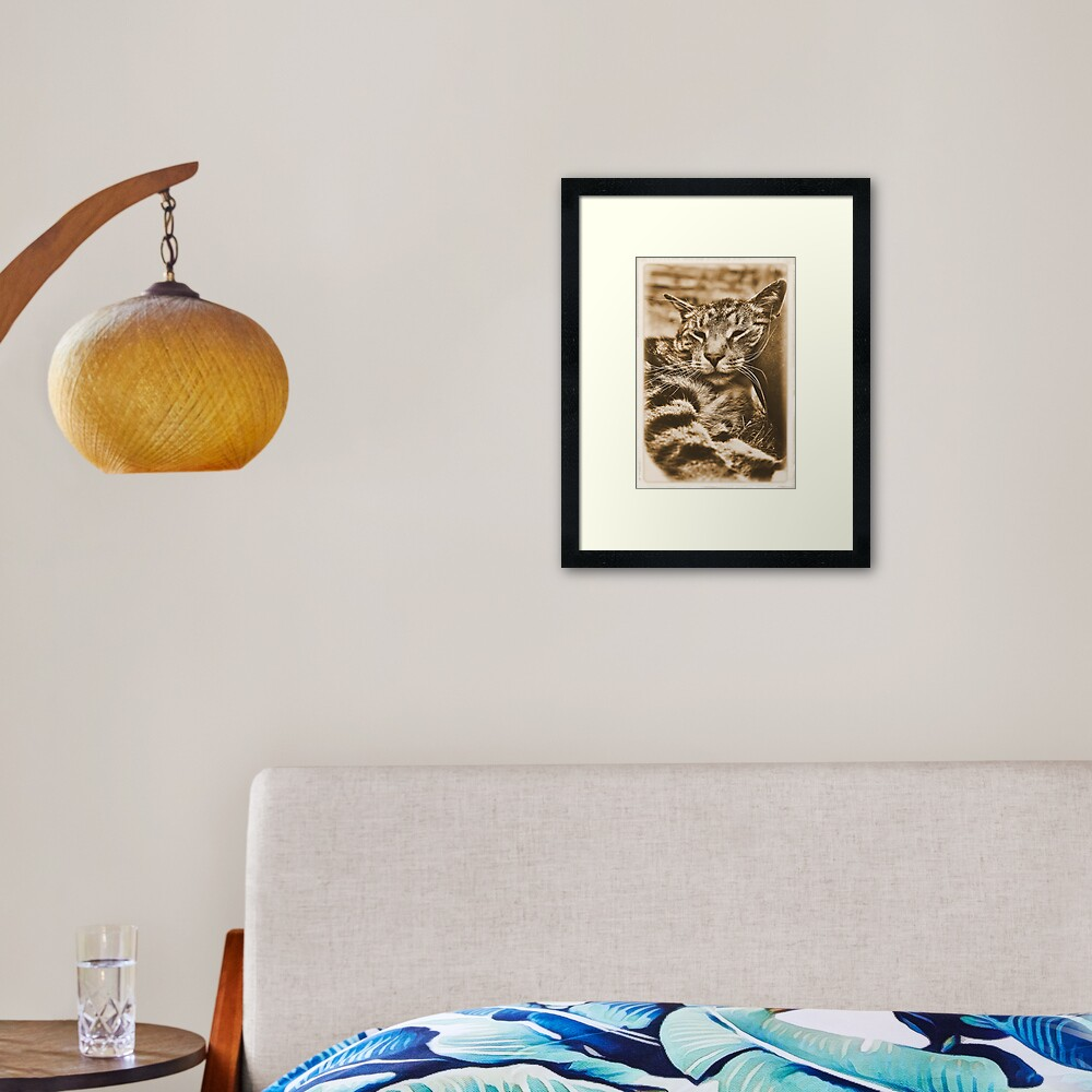 I Kneed an Older Pillow Framed Art Print