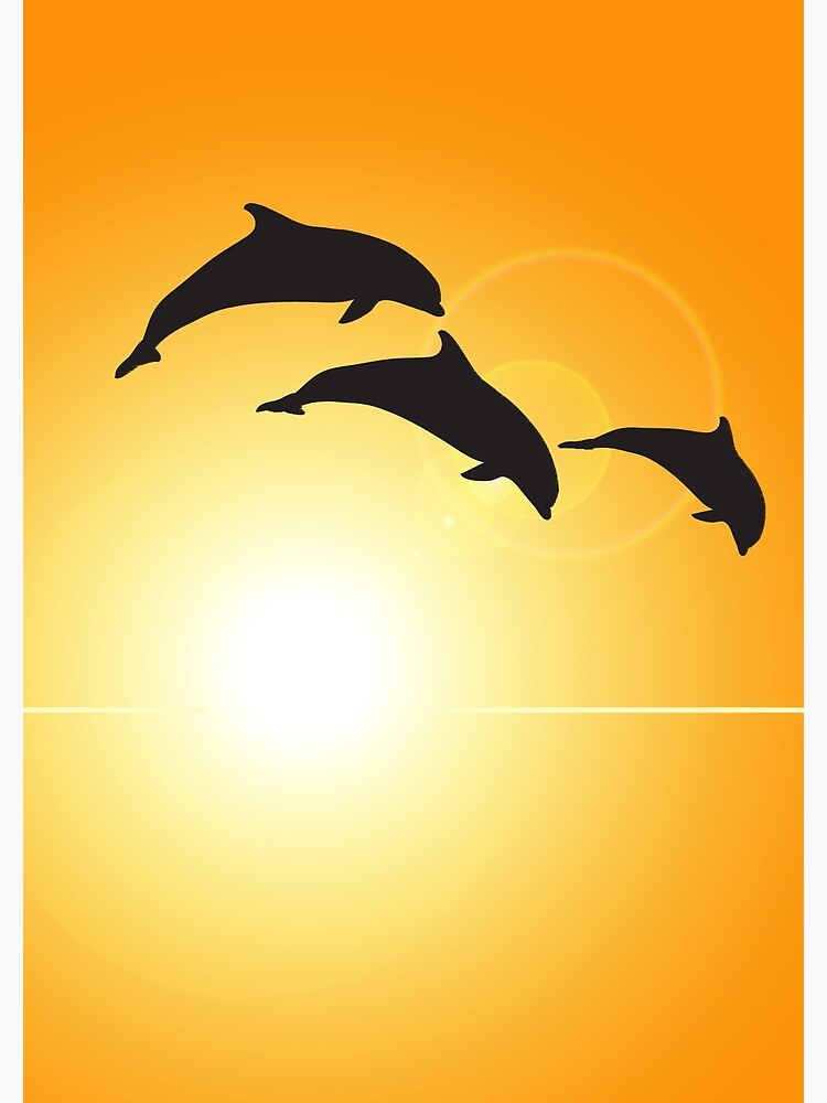 Dolphin Silhouette by DolphinPod