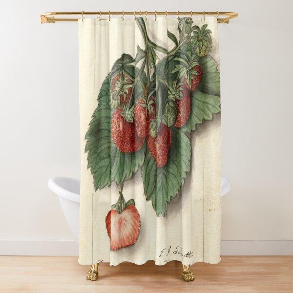 Vintage Strawberries Shower Curtain