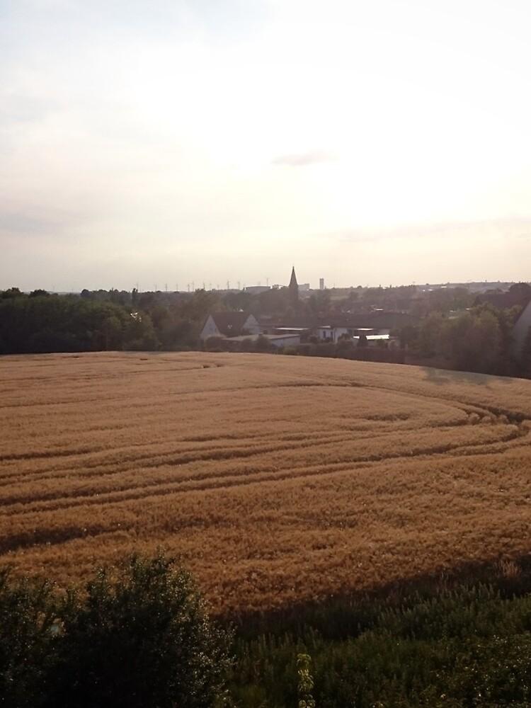 Baalberge, Landschaftsbild von Gourmetkater