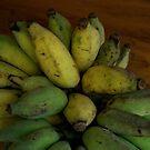 REAL ORGANIC Sugar Bananas by D. D.AMO