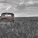 Rusty by shawng13
