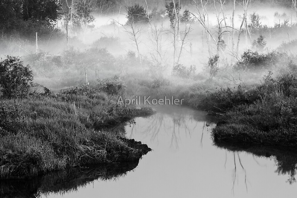 Into the Mist by April Koehler