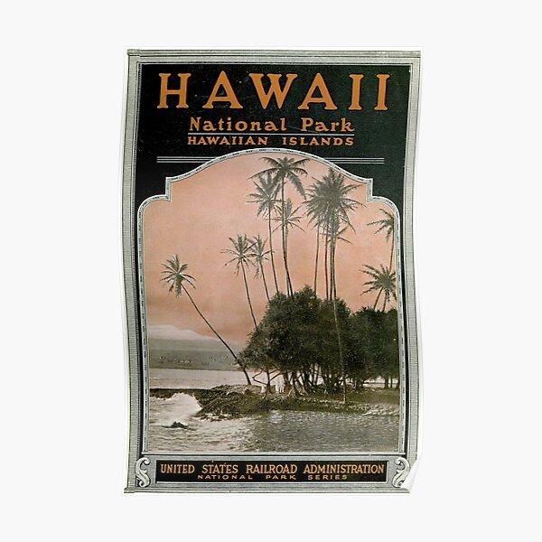 Affiche vintage du parc national d'Hawaï (1919) Poster