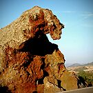 Elephant rock -Valledoria by Ferdinand Lucino