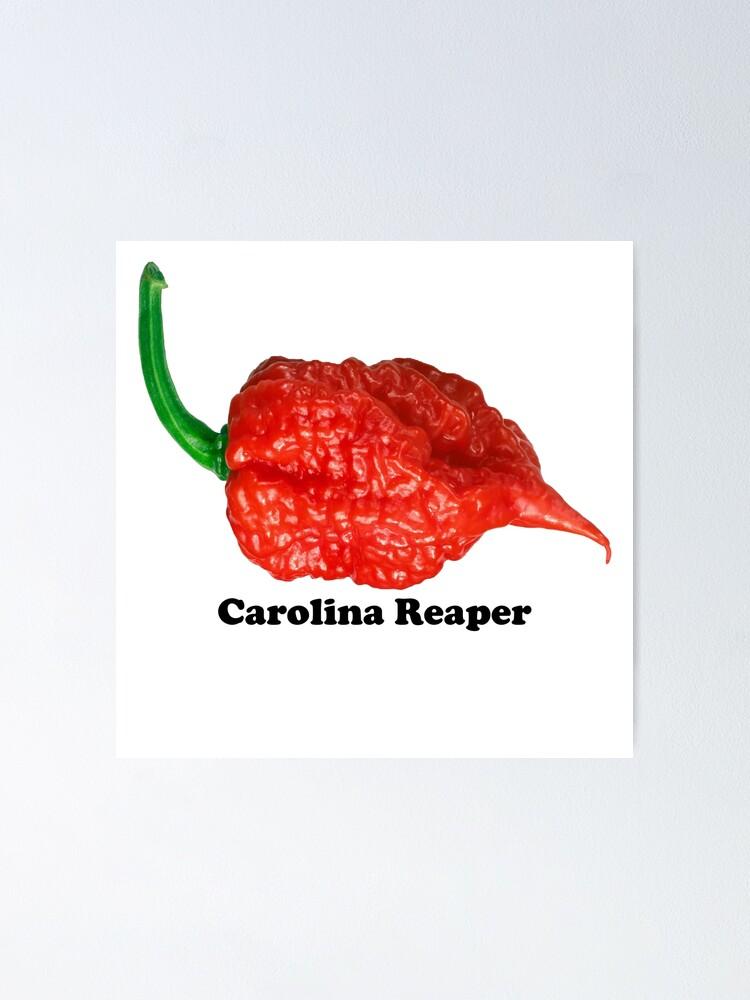carolina reaper