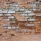 Brick-a-Brack by Monnie Ryan