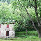 Little House by kotoro