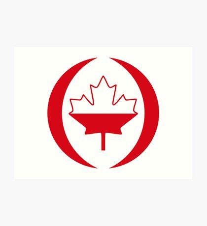 Polish Canadian Multinational Patriot Flag Series Art Print