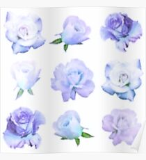 pastel roses Poster