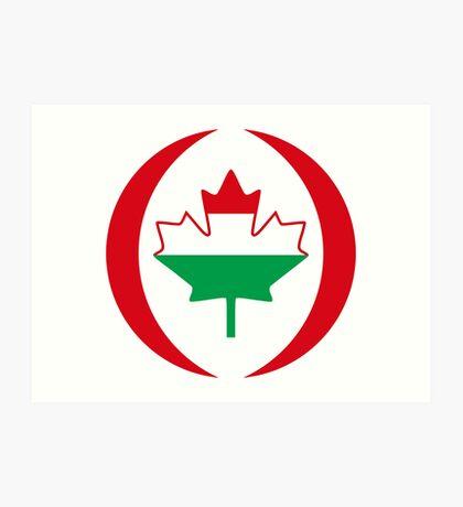 Hungarian Canadian Multinational Patriot Flag Series Art Print