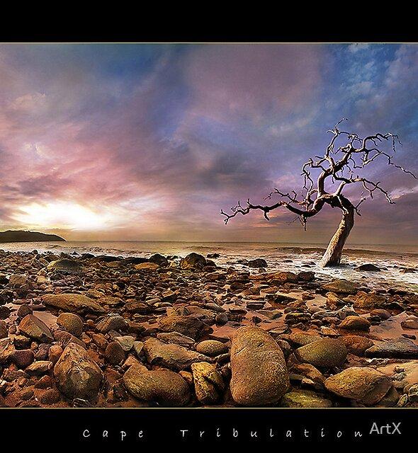 cape tribulation by ArtX