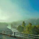 Von Nebel und Schatten von Sandra Fortier