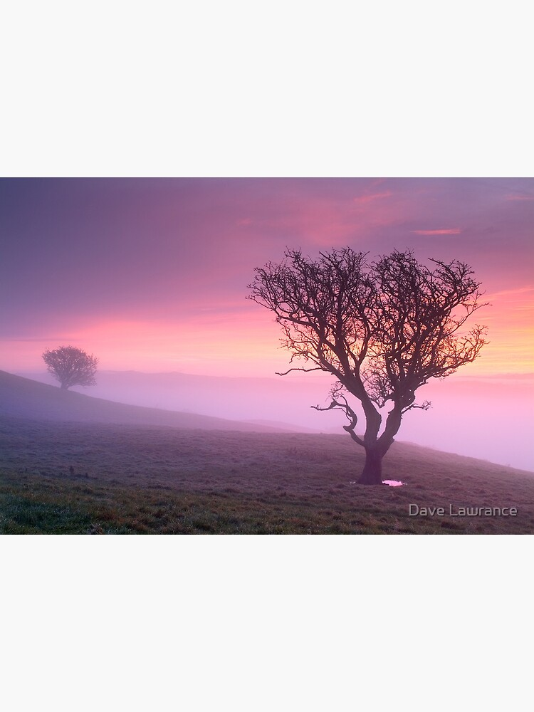 Misty sunrise, The Helm - Cumbria by DLLP