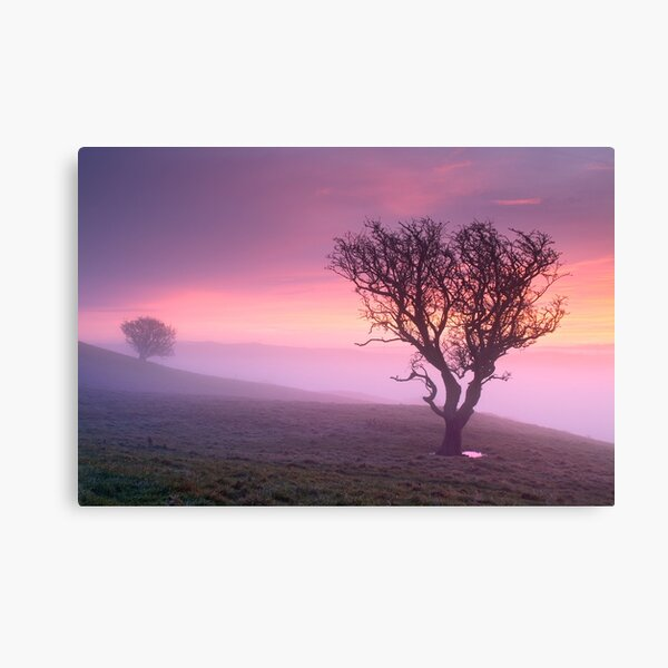 Misty sunrise, The Helm - Cumbria Canvas Print