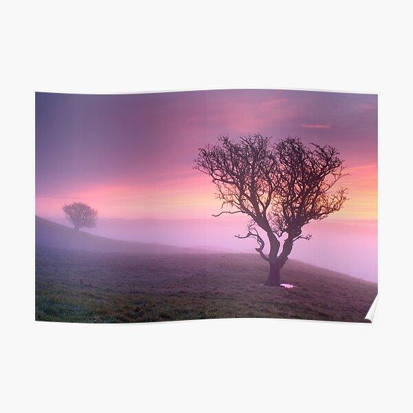 Misty sunrise, The Helm - Cumbria Poster