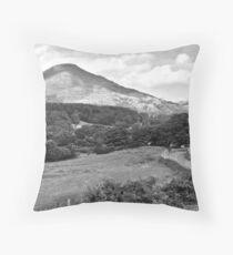 Lakelands Expanse Throw Pillow