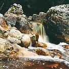 Rainforest Stream - South Coast Track by keleeson