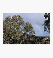 Late Rain Bow Photographic Print