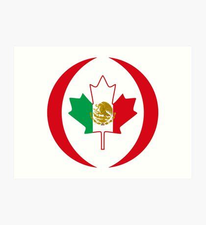 Mexican Canadian Multinational Patriot Flag Series Art Print