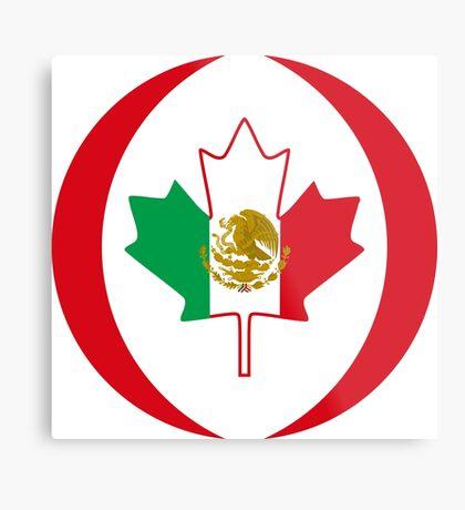 Mexican Canadian Multinational Patriot Flag Series Metal Print