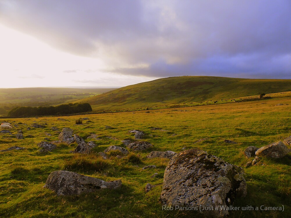 Dartmoor: Last Light Over Standon Hill by Robert parsons