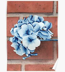 Prussian Flowers Poster