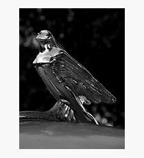 Automotive Bling ~ Part One Photographic Print