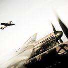 Fighter Escort by David Chadderton