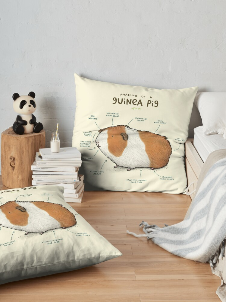 Alternate view of Anatomy of a Guinea Pig Floor Pillow