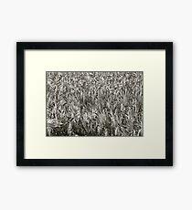 Delicious silver dream - landscape. Trondelag Norway. by Brown Sugar . Framed Print