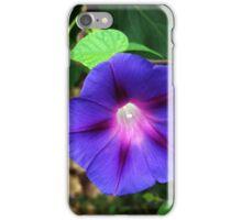 flashlight flower iPhone Case/Skin