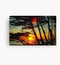 Sun setting through the trees Canvas Print