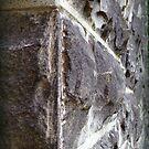 Stone Wall by vigor