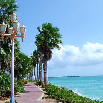 Orangestadt, Aruba by nkentb