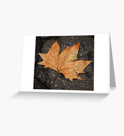 leaf study Greeting Card