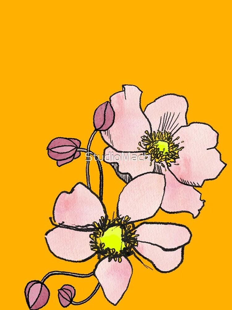 Anemone by StudioMach