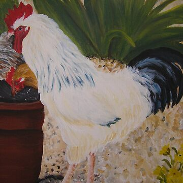 rooster by christine7