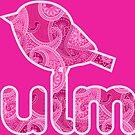 Colourfull Ulmer Spatz by dave-ulmrolls