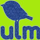 Ulmer Spatz Has The Blues by dave-ulmrolls