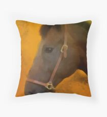 Norton Throw Pillow