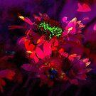 Secret Garden IX by Igor Shrayer